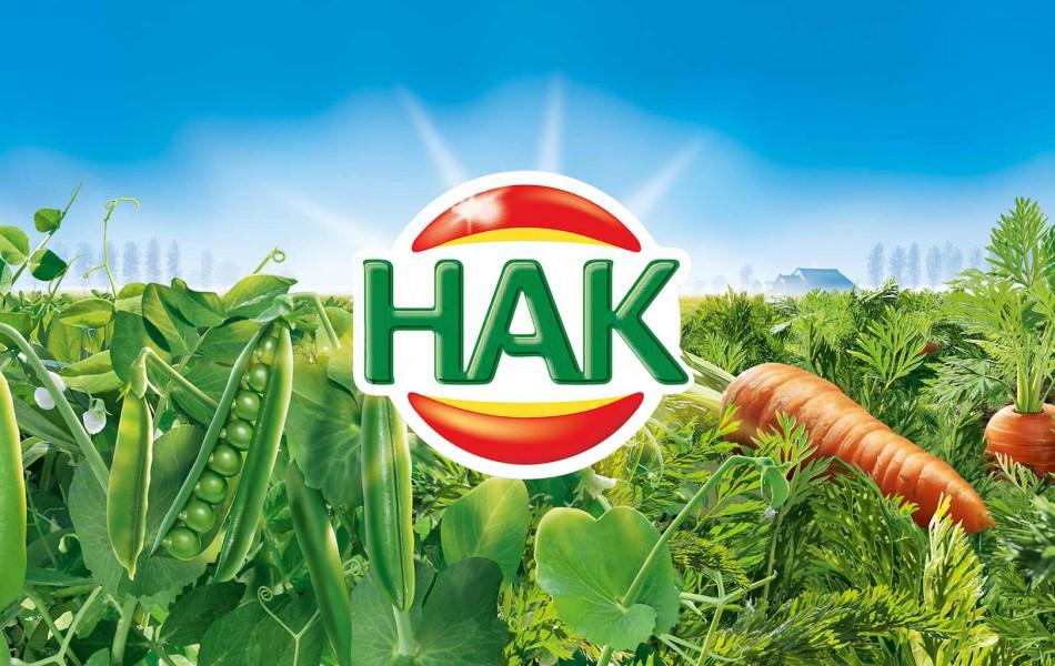 Eigenaar Hak koopt Duitse distributeur