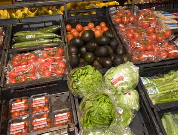 Attachment 003 food image dis126131i03
