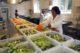 Platform verkoopt overgebleven eten uit horeca