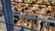 Supermarktomzet in 2015 flink gestegen