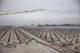 Jumbo maakt werk van zonnepanelen