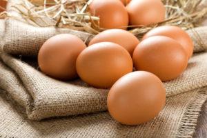 Ophokplicht geen gevolg voor bio-eieren